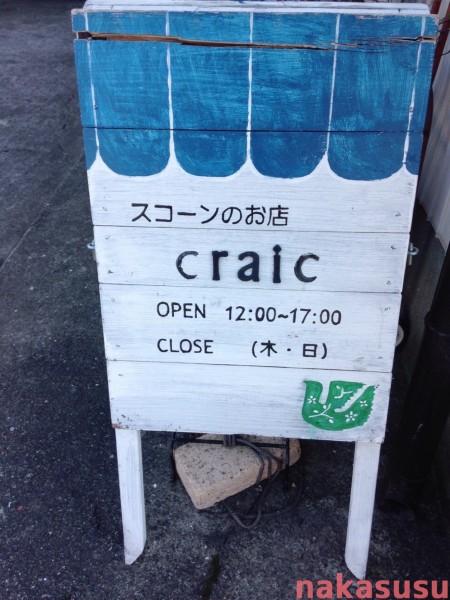 sayakan.craic08