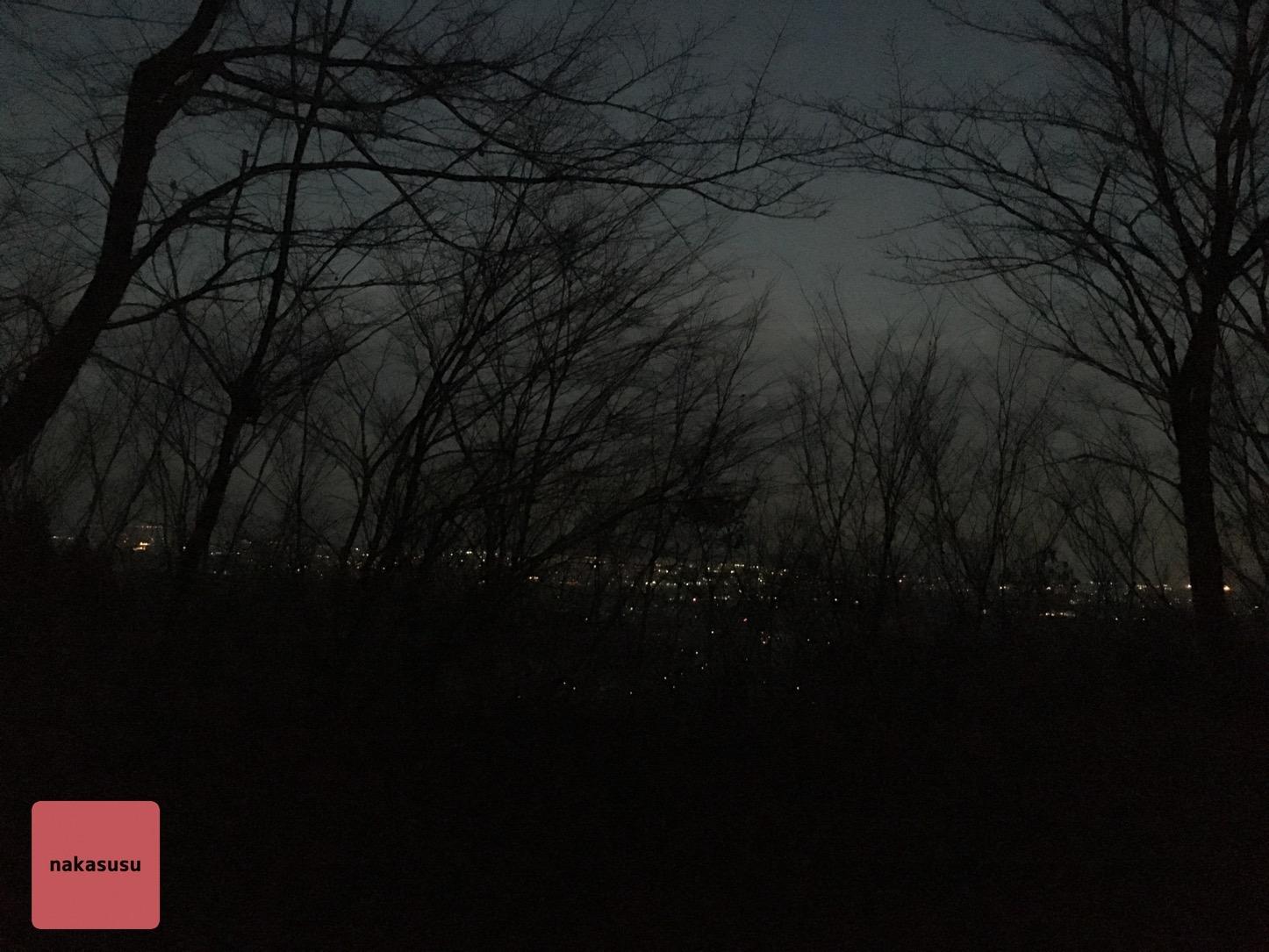 6時半頃の八面山中腹