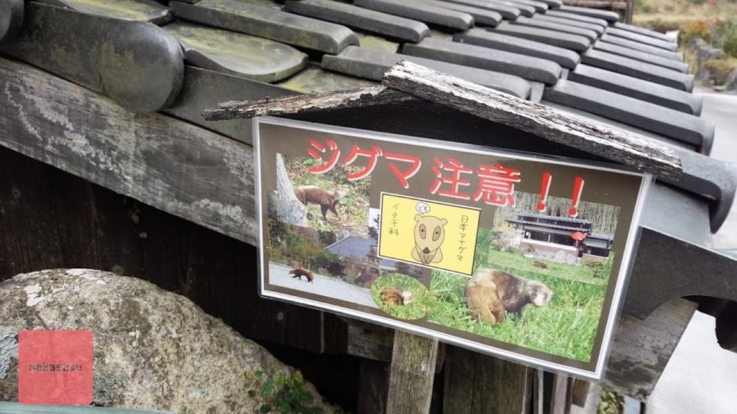 nakasusu.nodoka005