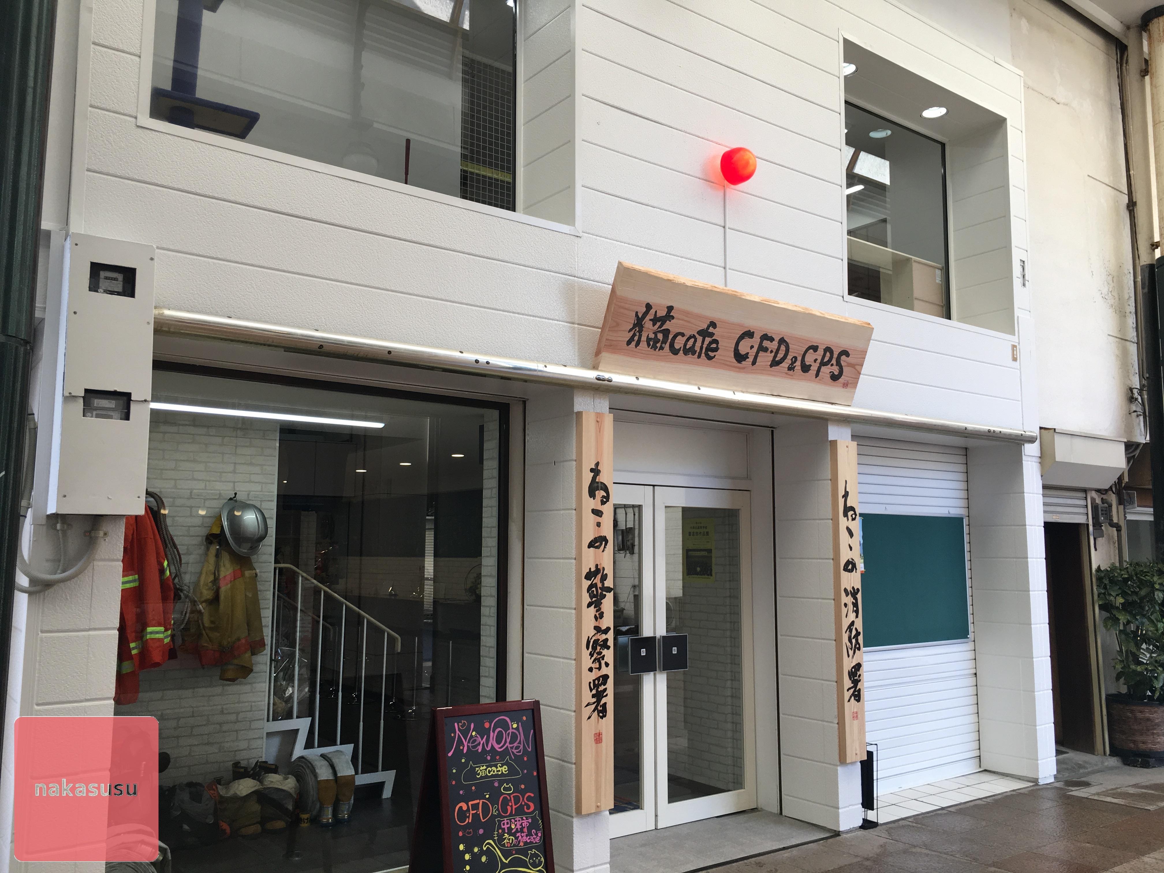 猫カフェだとぉ〜!?「猫cafe C・F・D&C・P・S」